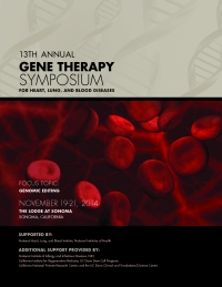 13th Annual Gene Therapy Symposium Poster